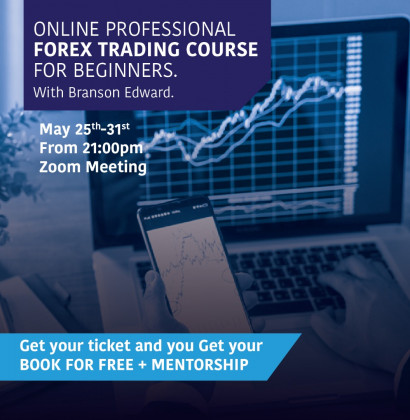 ONLINE PROFESSIONAL FOREX TRADING COURSE FOR BEGINNERS